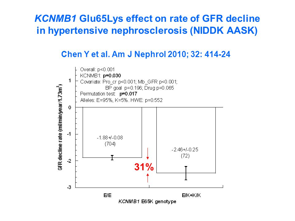 KCNMB1 Glu65Lys effect on rate of GFR decline
