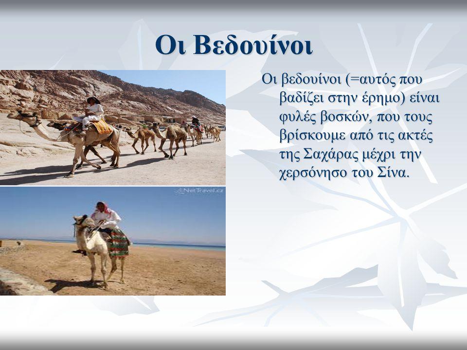Οι Βεδουίνοι