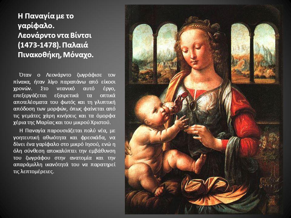 Η Παναγία με το γαρίφαλο. Λεονάρντο ντα Βίντσι (1473-1478)