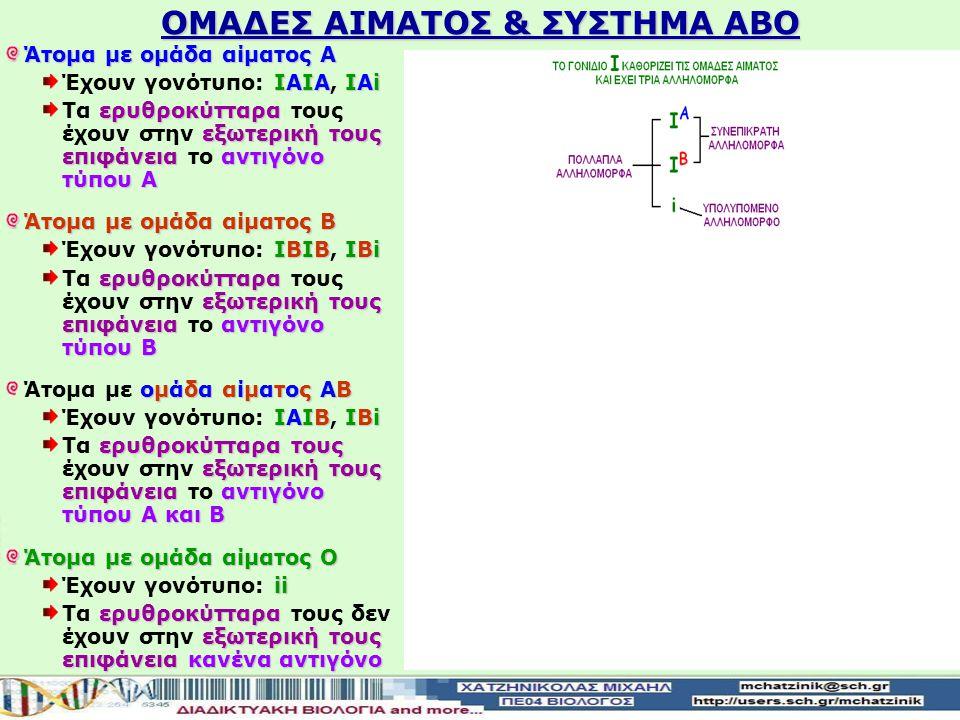 ΟΜΑΔΕΣ ΑΙΜΑΤΟΣ & ΣΥΣΤΗΜΑ ΑΒΟ