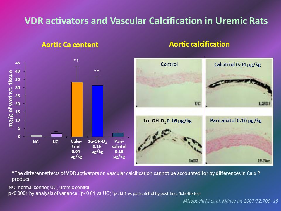 VDR activators and Vascular Calcification in Uremic Rats