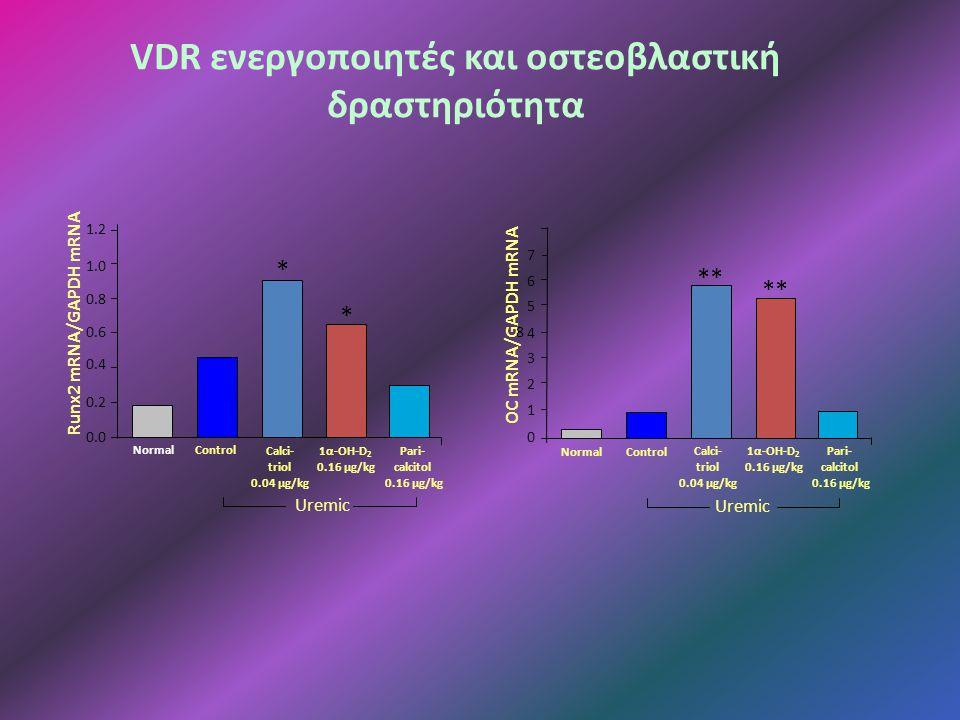 VDR ενεργοποιητές και οστεοβλαστική δραστηριότητα