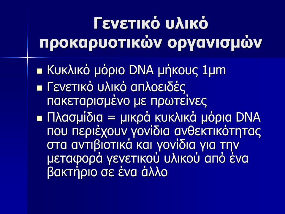 Γενετικό υλικό προκαρυοτικών οργανισμών