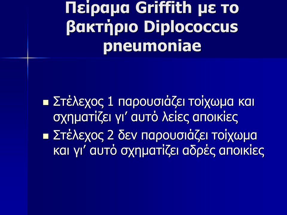 Πείραμα Griffith με το βακτήριο Diplococcus pneumoniae