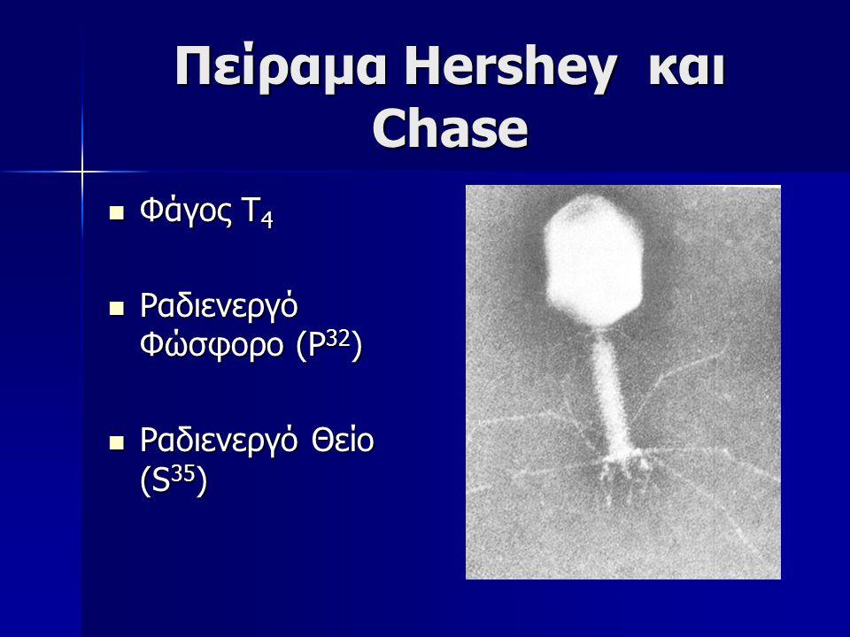 Πείραμα Hershey και Chase