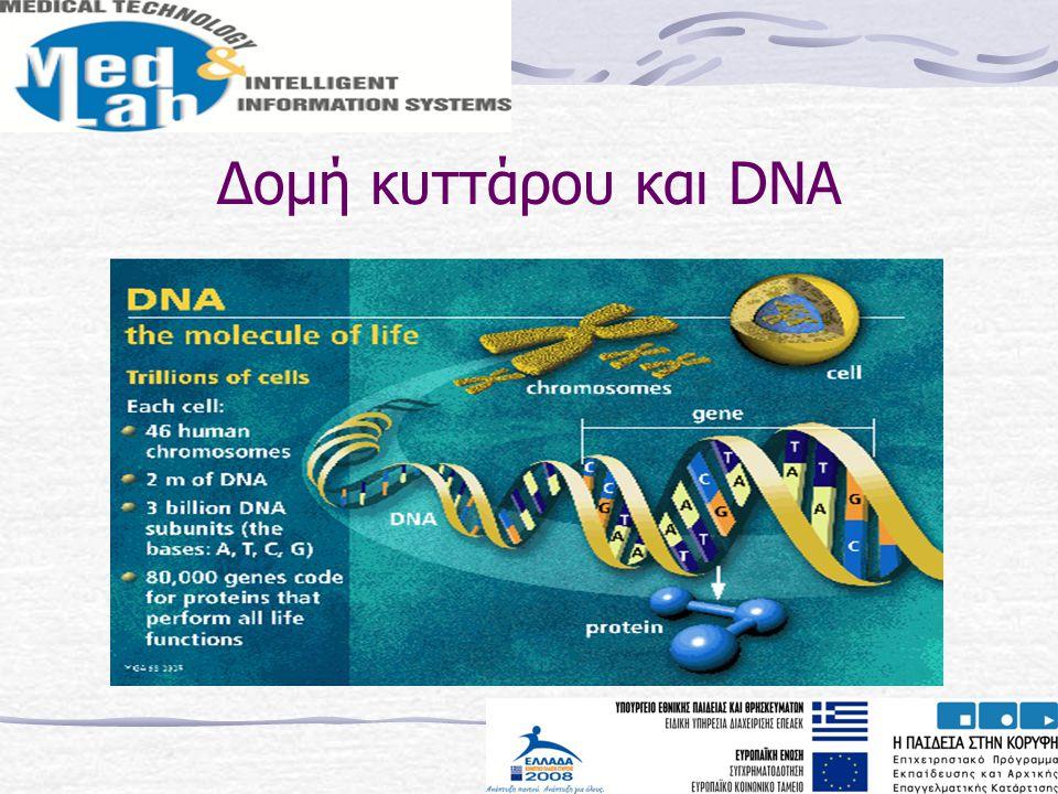 Δομή κυττάρου και DNA