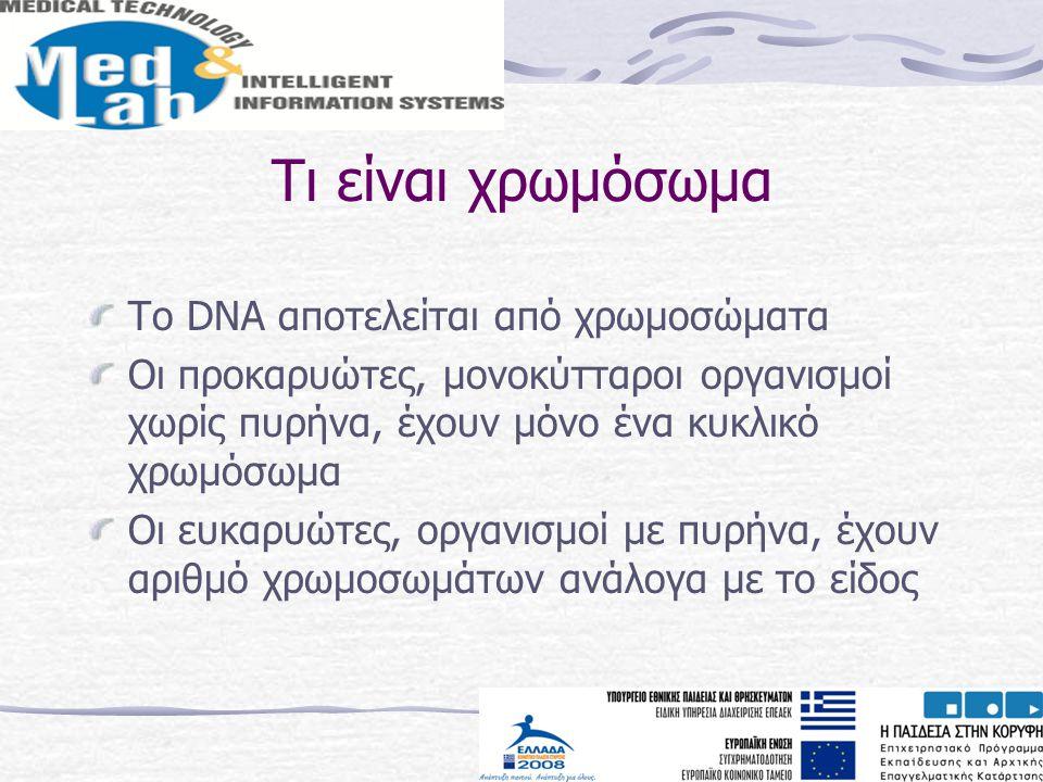 Τι είναι χρωμόσωμα Το DNA αποτελείται από χρωμοσώματα