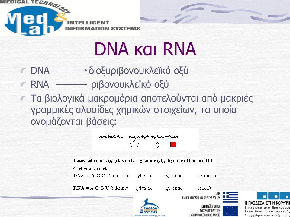DNA και RNA DNA διοξυριβονουκλεϊκό οξύ RNA ριβονουκλεϊκό οξύ