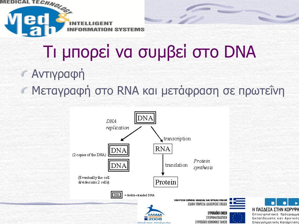 Τι μπορεί να συμβεί στο DNA