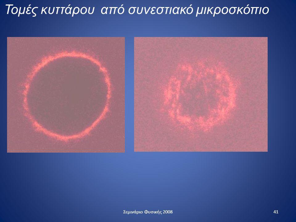 Τομές κυττάρου από συνεστιακό μικροσκόπιο