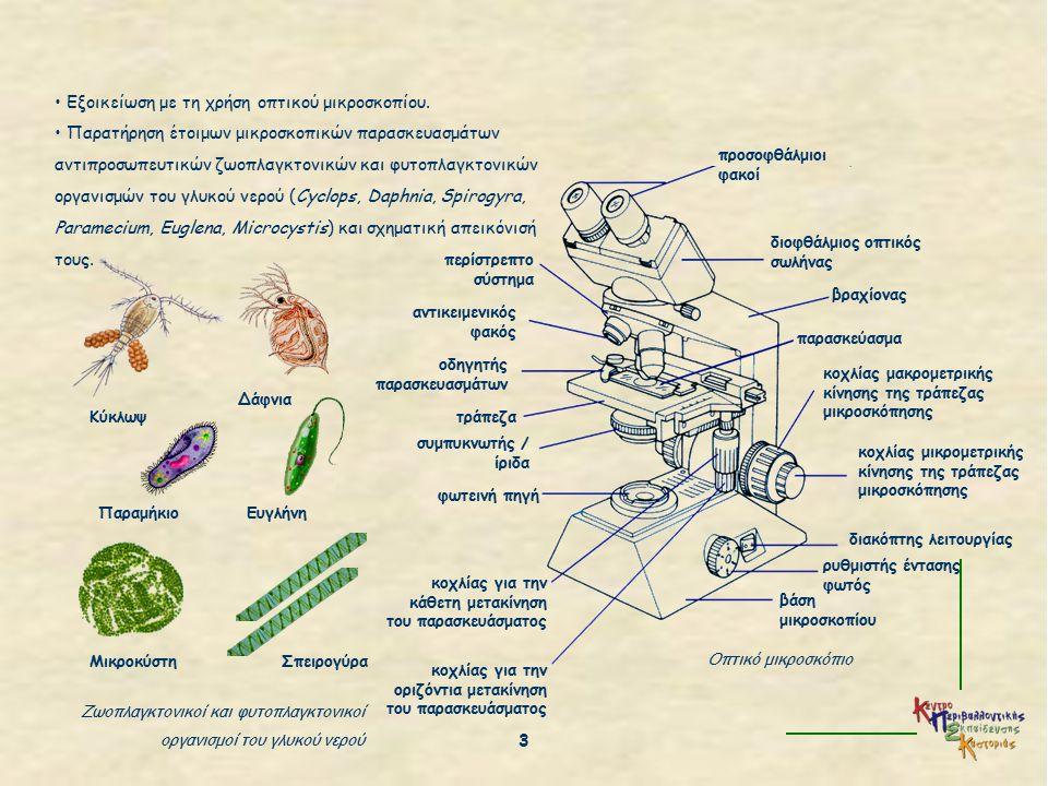 Εξοικείωση με τη χρήση οπτικού μικροσκοπίου.
