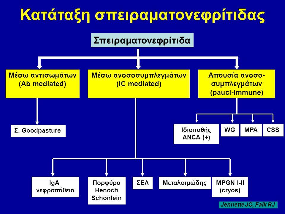 Κατάταξη σπειραματονεφρίτιδας Μέσω ανoσοσυμπλεγμάτων