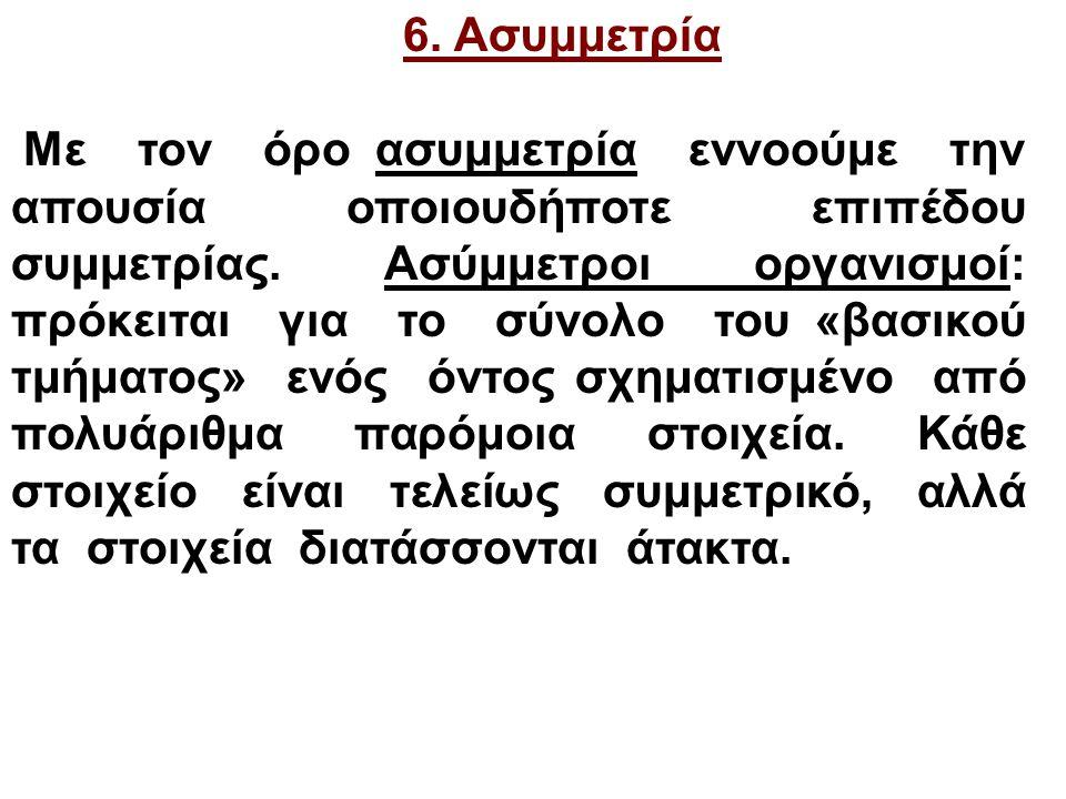 6. Ασυμμετρία