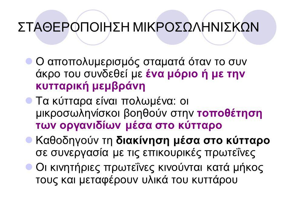 ΣΤΑΘΕΡΟΠΟΙΗΣΗ ΜΙΚΡΟΣΩΛΗΝΙΣΚΩΝ