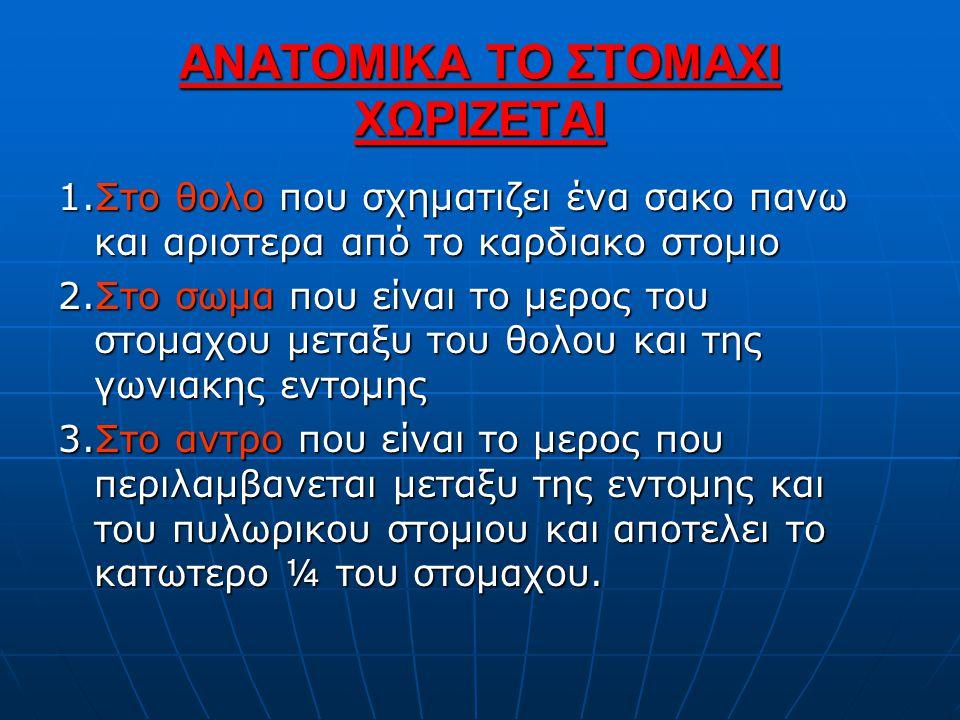 ΑΝΑΤΟΜΙΚΑ ΤΟ ΣΤΟΜΑΧΙ ΧΩΡΙΖΕΤΑΙ