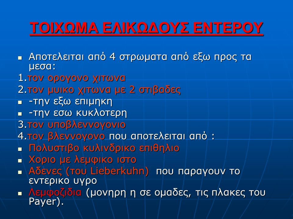 ΤΟΙΧΩΜΑ ΕΛΙΚΩΔΟΥΣ ΕΝΤΕΡΟΥ