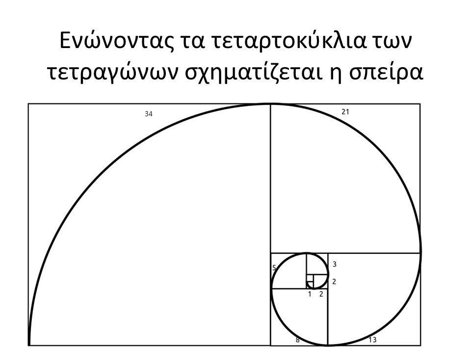 Ενώνοντας τα τεταρτοκύκλια των τετραγώνων σχηματίζεται η σπείρα