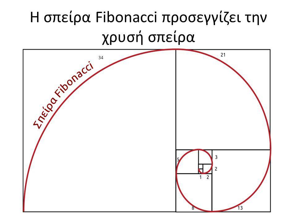 Η σπείρα Fibonacci προσεγγίζει την χρυσή σπείρα