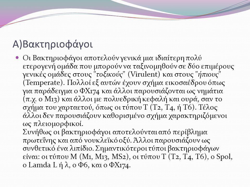 Α)Βακτηριοφάγοι