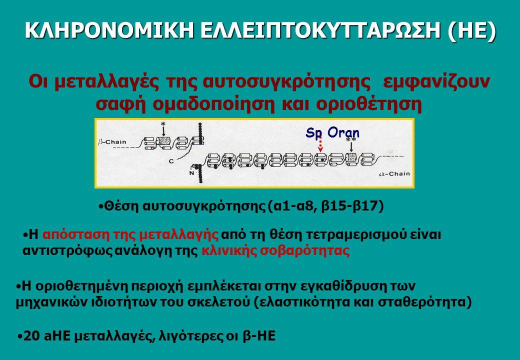 ΚΛΗΡΟΝΟΜΙΚΗ ΕΛΛΕΙΠΤΟΚΥΤΤΑΡΩΣΗ (ΗΕ)