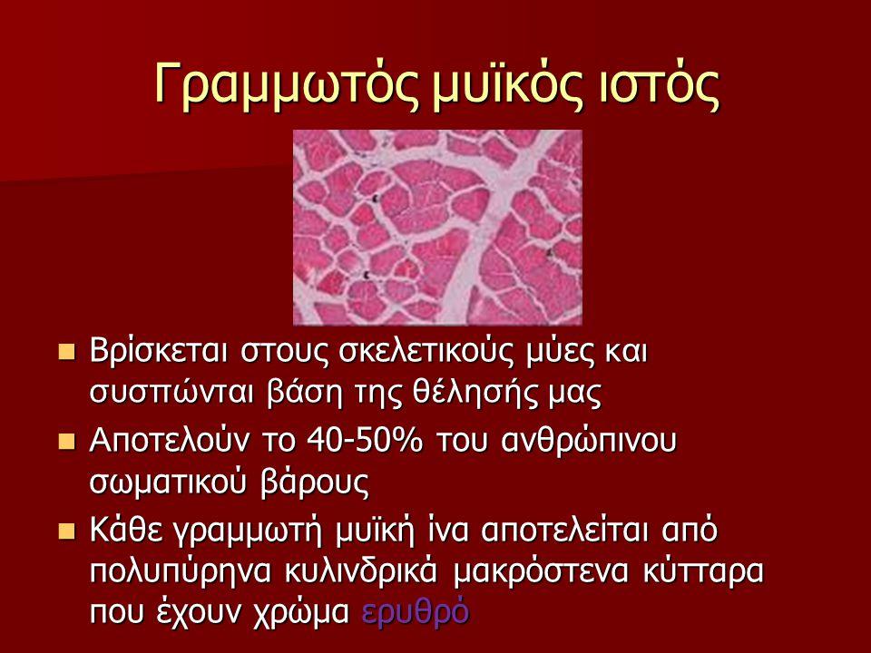 Γραμμωτός μυϊκός ιστός