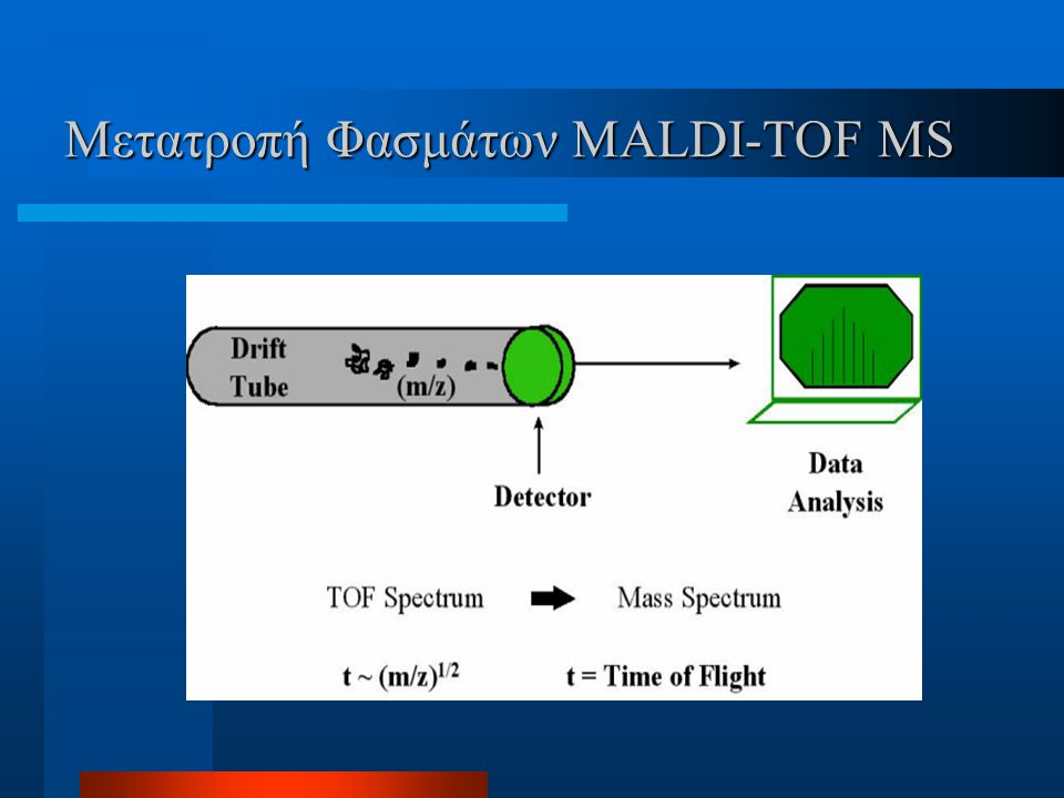 Μετατροπή Φασμάτων MALDI-TOF MS