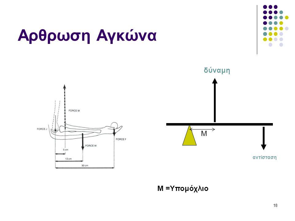 Αρθρωση Αγκώνα δύναμη M αντίσταση M =Υπομόχλιο 18