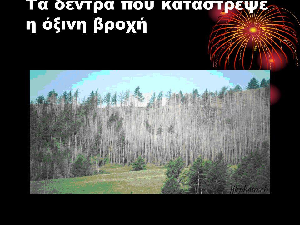 Τα δέντρα που κατάστρεψε η όξινη βροχή