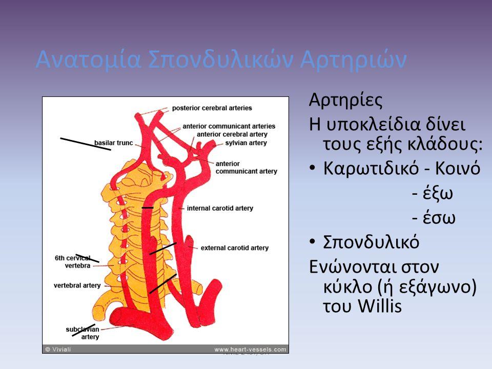 Ανατομία Σπονδυλικών Αρτηριών