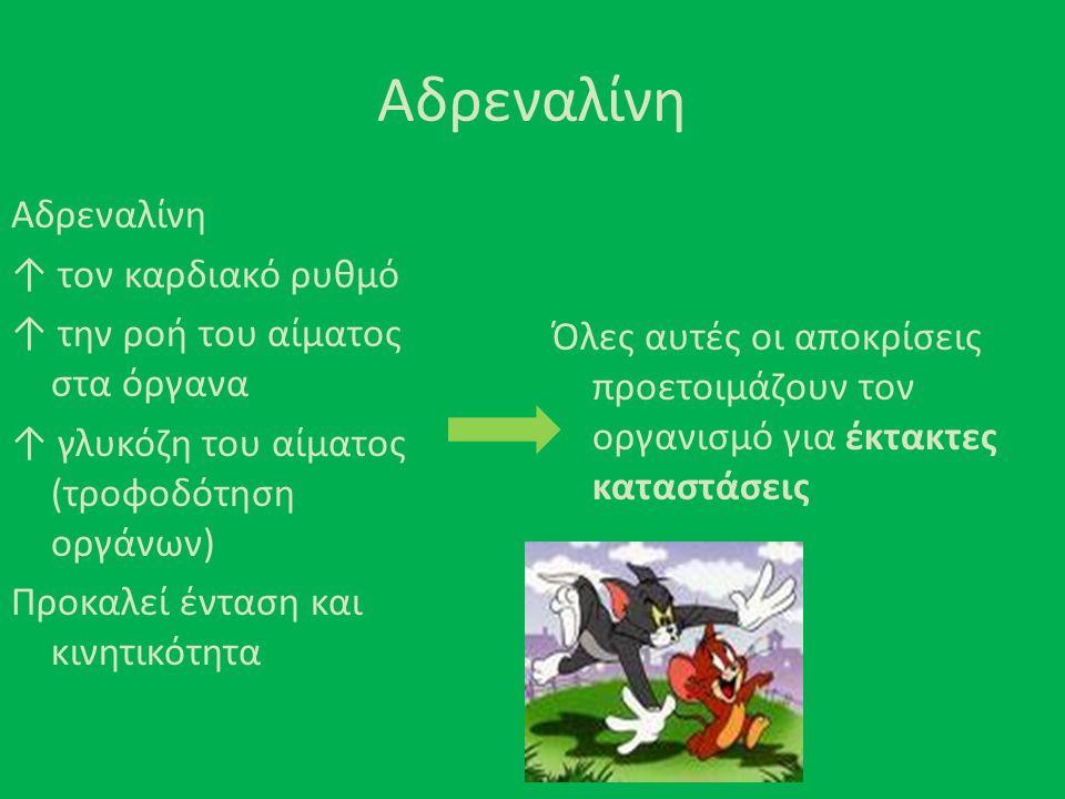 Αδρεναλίνη