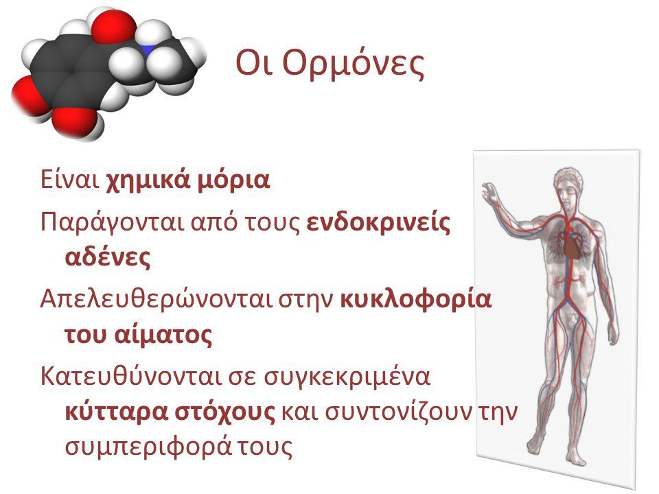 Οι Ορμόνες