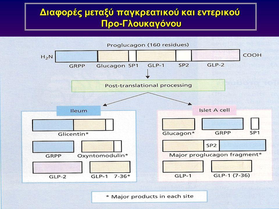 Διαφορές μεταξύ παγκρεατικού και εντερικού Προ-Γλουκαγόνου