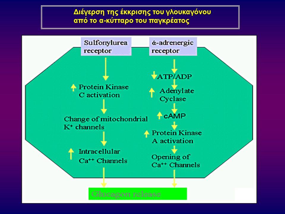 Διέγερση της έκκρισης του γλουκαγόνου