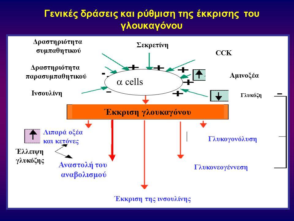 Γενικές δράσεις και ρύθμιση της έκκρισης τoυ γλoυκαγόνoυ