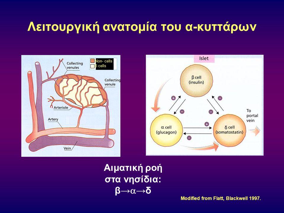 Λειτουργική ανατομία του α-κυττάρων