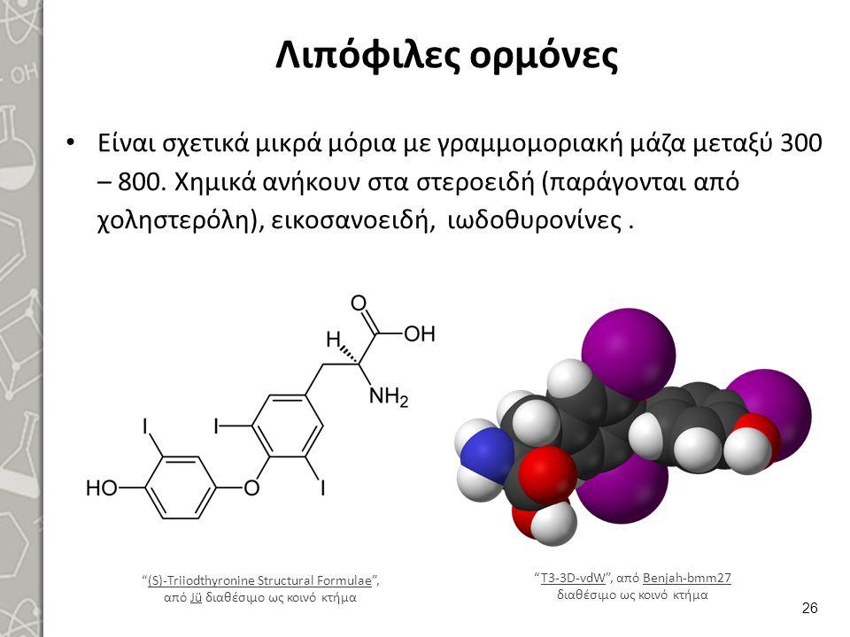 Προγεστερόνη 1/3 Είναι η ορμόνη του ωχρού σωματίου που παράγεται επίσης και από τον πλακούντα κυρίως προς τα τέλη της εγκυμοσύνης.