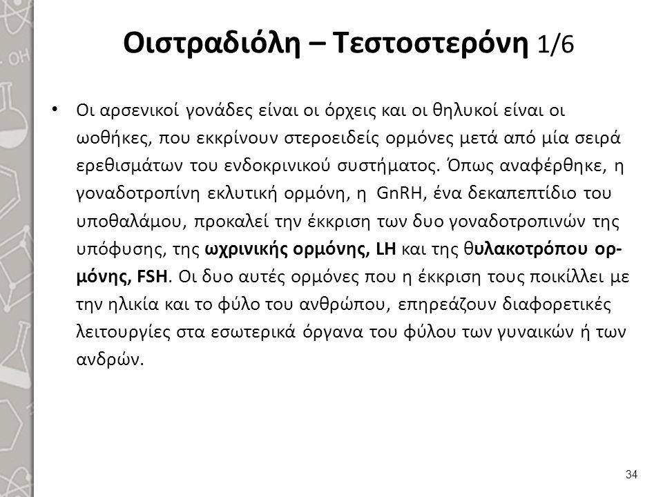 Οιστραδιόλη – Τεστοστερόνη 2/6