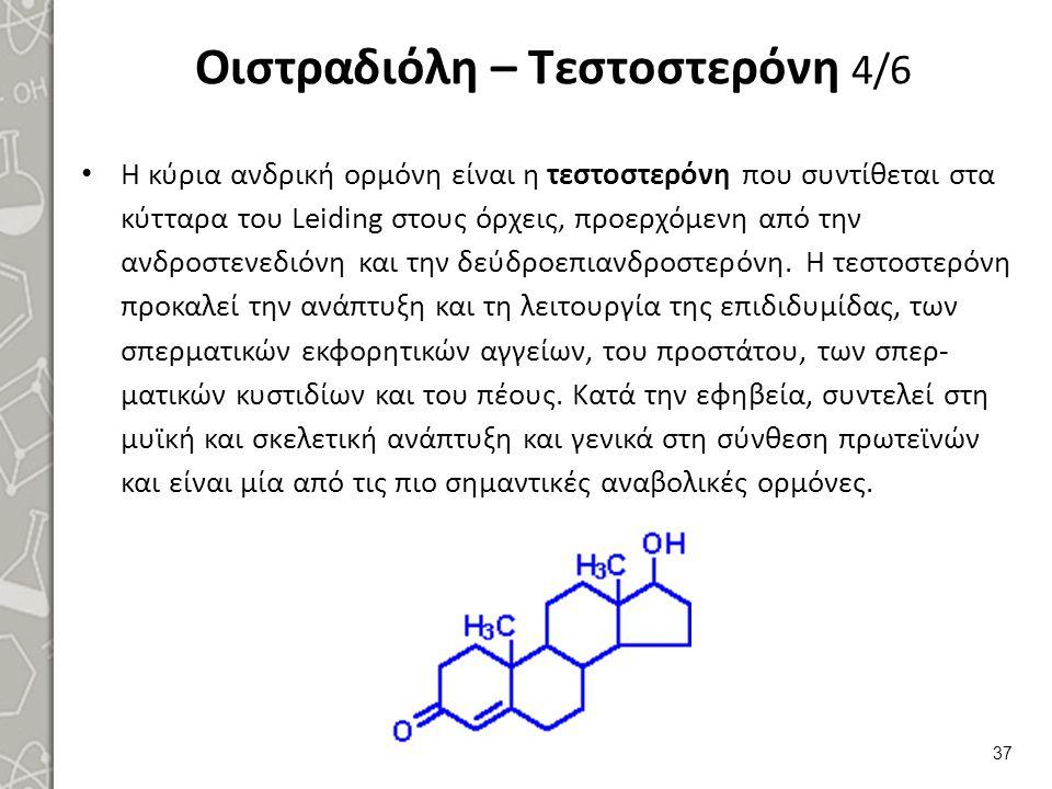 Οιστραδιόλη – Τεστοστερόνη 5/6