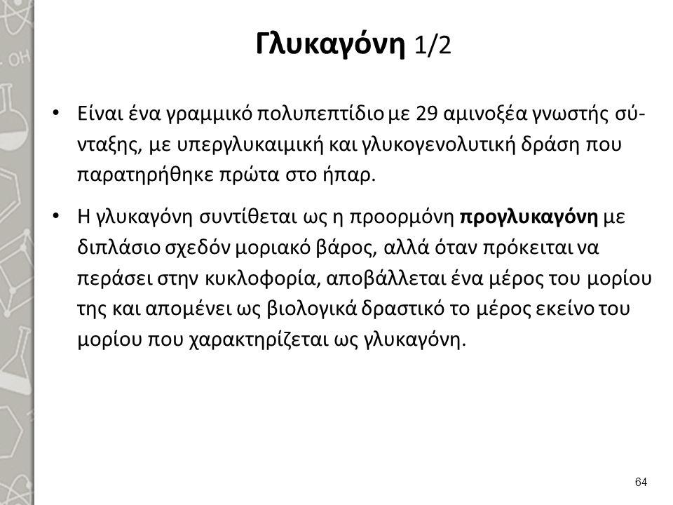 Γλυκαγόνη 2/2