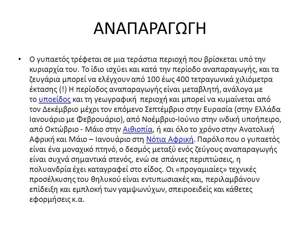 ΑΝΑΠΑΡΑΓΩΓΗ