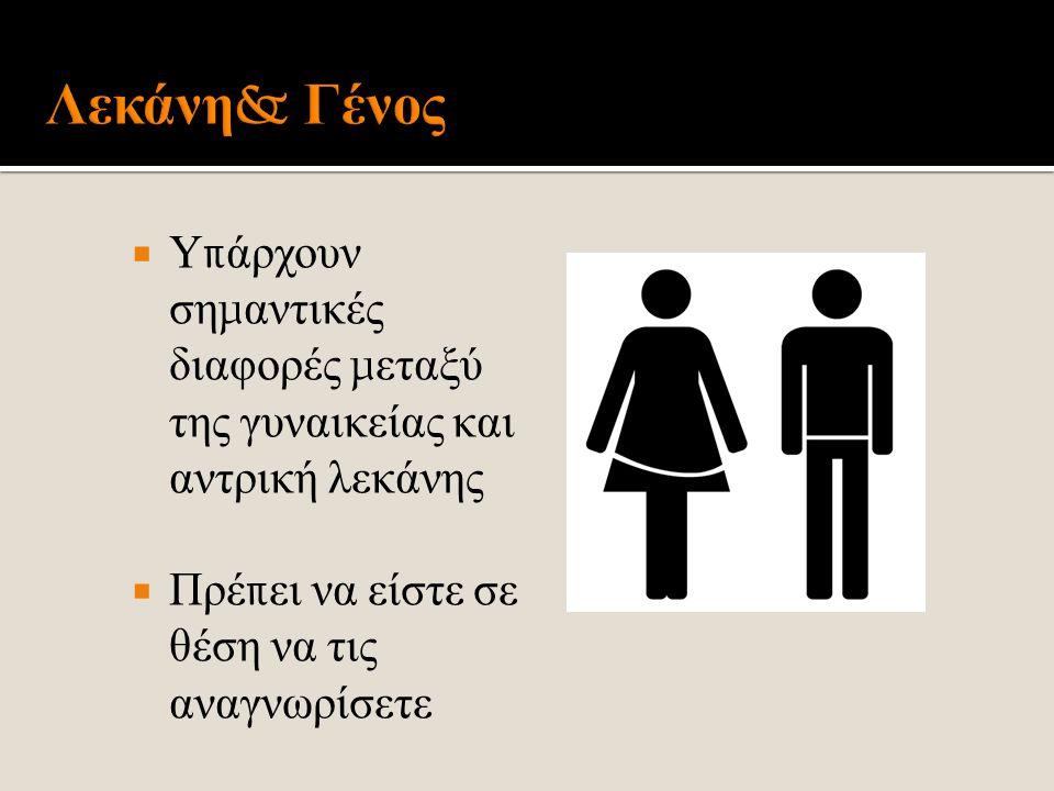 Λεκάνη& Γένος Υπάρχουν σημαντικές διαφορές μεταξύ της γυναικείας και αντρική λεκάνης.