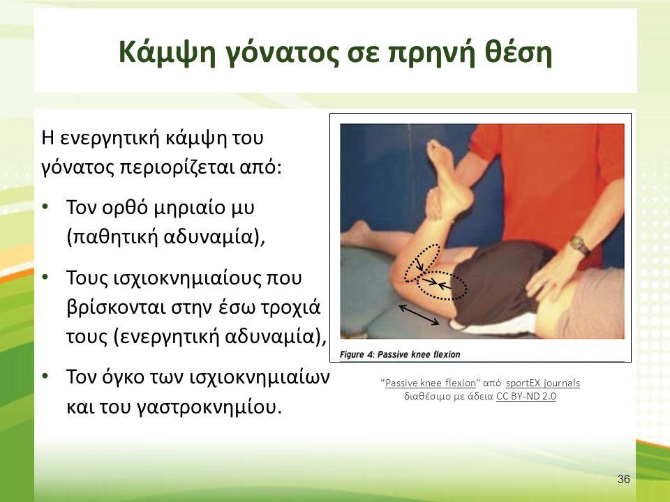 Θέσεις γόνατος – Θυλακικό πρότυπο