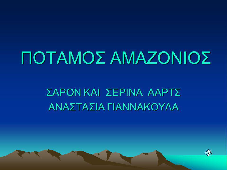 ΣΑΡΟΝ ΚΑΙ ΣΕΡΙΝΑ ΑΑΡΤΣ ΑΝΑΣΤΑΣΙΑ ΓΙΑΝΝΑΚΟΥΛΑ