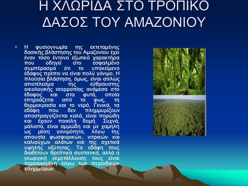 Η ΧΛΩΡΙΔΑ ΣΤΟ ΤΡΟΠΙΚΟ ΔΑΣΟΣ ΤΟΥ ΑΜΑΖΟΝΙΟΥ