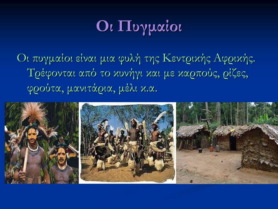 Οι Πυγμαίοι Οι πυγμαίοι είναι μια φυλή της Κεντρικής Αφρικής.