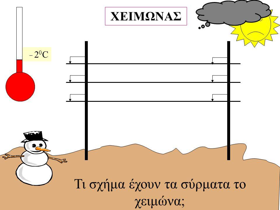Τι σχήμα έχουν τα σύρματα το χειμώνα;