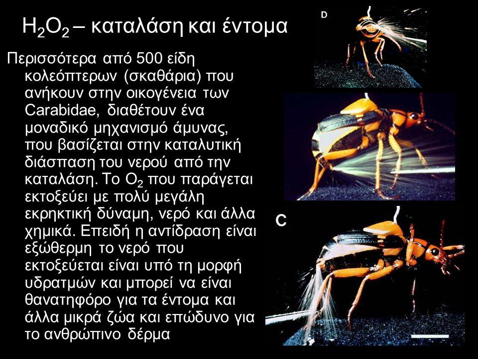 H2Ο2 – καταλάση και έντομα