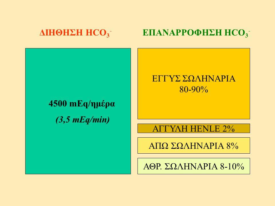 ΔΙΗΘΗΣΗ HCO3- ΕΠΑΝΑΡΡΟΦΗΣΗ HCO3- ΕΓΓΥΣ ΣΩΛΗΝΑΡΙΑ. 80-90% 4500 mEq/ημέρα. (3,5 mEq/min) ΑΓΓΥΛΗ HENLE 2%