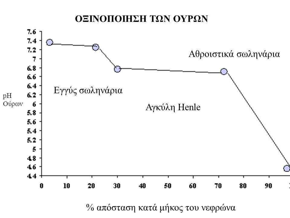 % απόσταση κατά μήκος του νεφρώνα