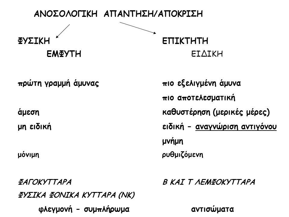ΑΝΟΣΟΛΟΓΙΚΗ ΑΠΑΝΤΗΣΗ/ΑΠΟΚΡΙΣΗ
